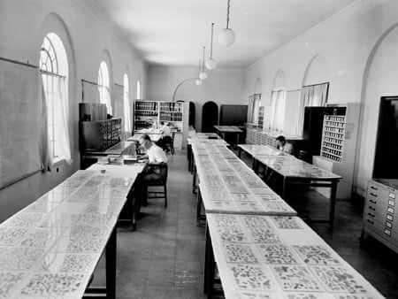 Research on dead sea scrolls